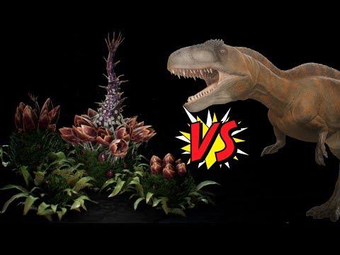 Wild Giganotosaurus Lever 1 vs 50 Plant Species X | ARK Gaming Online