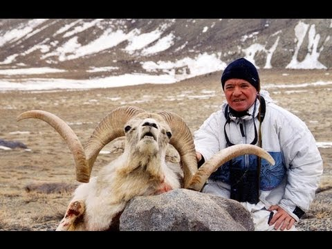 MARCOPOLO ARGALI HUNTING Chasse PAMIRS TAJIKISTAN by Seladang