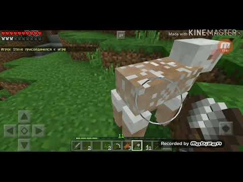 Прохождение игры майнкрафт 2 серия зделали загон для овец
