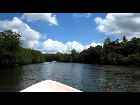 Madu River Safari - Sri Lanka