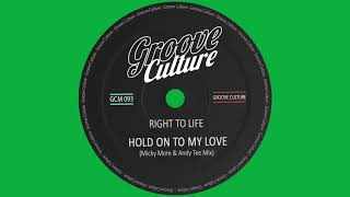 Right To Life - Hold On To My Love (Micky More & Andy Tee Mix)