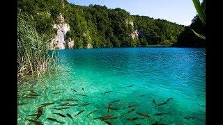 PLITVICE LAKES NATIONAL PARK | CROATIA | PART 2
