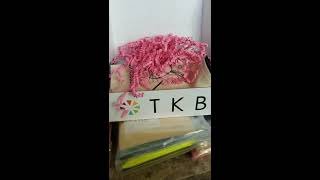 TKB Trading Mystery Box