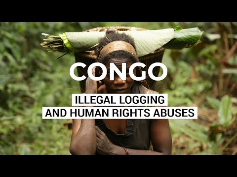Sanctuary - Illegal Logging and Human Rights Abuses - Democratic Republic of Congo DRC