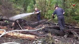 NRWspot.de | Waldbrand Selbecke – Feuer im Wald