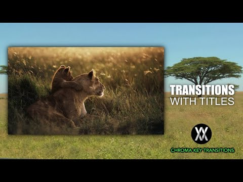 Chroma Key Transitions with Titles