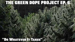 "THE GREEN DOPE PROJECT EP. 6 ""DO WHATEVER IT TAKES"""