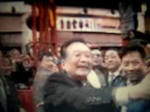Chinese Premier Wen Jiiabao in UK and protest