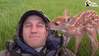 Injured Baby Deer Rescued By The Perfect Guy | The Dodo