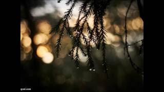 大江裕さんの「こころ雨」は2016年3月9日発売。作詞:伊藤美和 作曲:徳久...