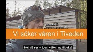 Bergslagsleden: Vi söker våren i Tiveden