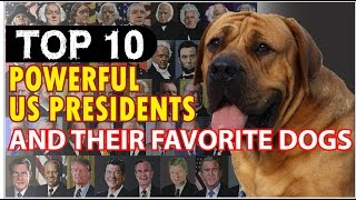 Top 10 Powerful US Presidents and their favorite dogs !! Presidential dogs 2017