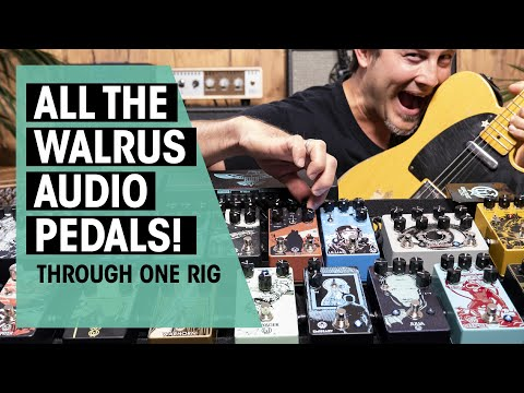 Playing ALL Walrus Audio Pedals | Thomann