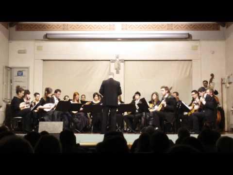 Mandolin guitar Orchestra