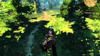 witcher 3 wild hunt core 2 duo 1 86 e6320 gt630 2gb ddr3