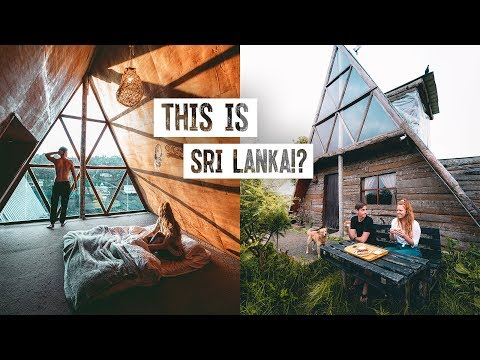 We Stayed in an ECO LODGE on a TEA PLANTATION! 🇱🇰 Sri Lanka's Coolest Airbnb! (Nuwara Eliya)