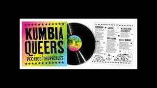 Caballo Viejo - Kumbia Queers.wmv