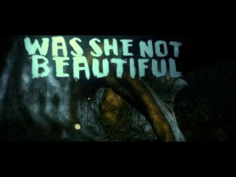 A Tragic Setback - Too Beautiful for Earth (Official Lyric Video)