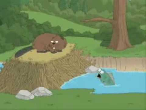 Family Guy: Beavers are Assholes