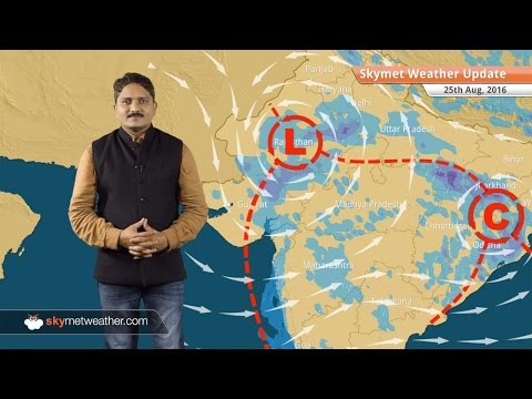 Weather Forecast for Aug 25: Monsoon rains in Delhi, West UP, MP, Rajasthan, Mumbai
