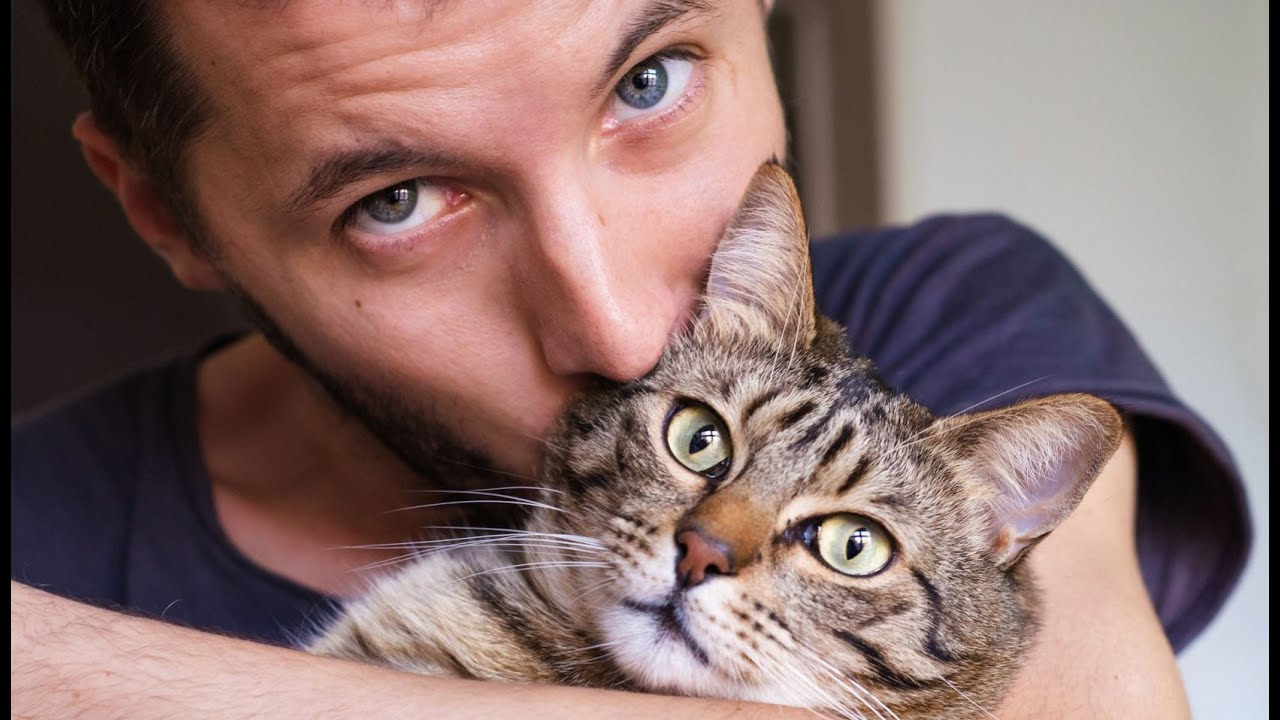 register your emotional support animal