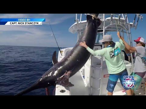 None - Man Catches 757 Pound Swordfish