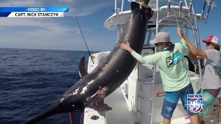 Fisherman reels in 757-pound swordfish in Florida