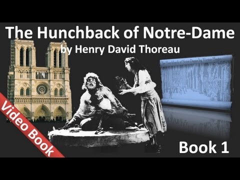 Book 01- The Hunchback of Notre Dame Audiobook by Victor Hugo (Chs 1-6)