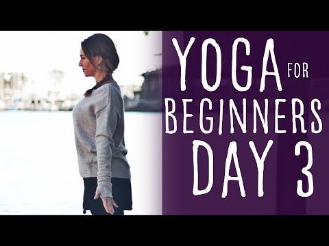 16 Minute Yoga For Beginners 30 Day Challenge Day 3 With Fightmaster Yoga