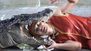 Тайланд. Шоу крокодилов