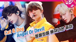 Download lagu TXT (투모로우바이투게더) - Cat & Dog + Angel Or Devil + 동물원을 빠져나온 퓨마 | TOMORROW X TOGETHER COMEBACKSHOW