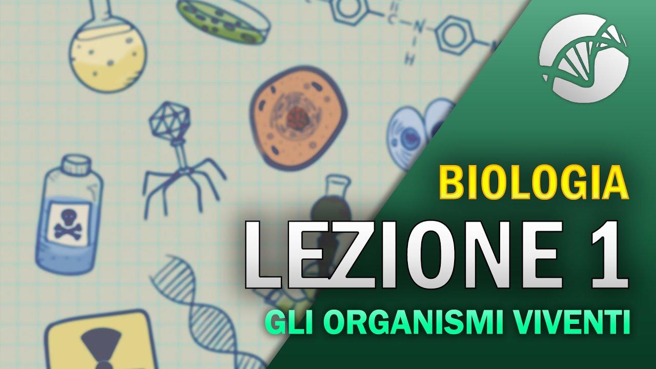 Download BIOLOGIA - Lezione 1 - Introduzione alla Biologia: gli organismi viventi