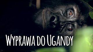 Uganda - Goryle we mgle. Wyprawa do Afryki!