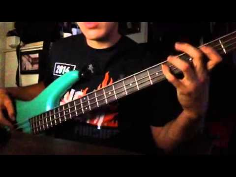 Tribal Seeds- Lonely Night (bass cover)