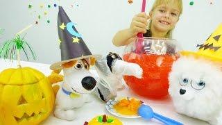 Игры для детей. Хэллоуин с Гиджет и Максом: игрушки из мультфильма Тайная жизнь домашних животных!