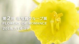 2017年7月。写真家 五海ゆうじ 総合監修のもと、9人のアマチュア...