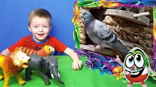 Детские Рисунки в Реальности Животные для Детей Тигр Жираф Голубь Кролик Видео Для Детей Lion boy