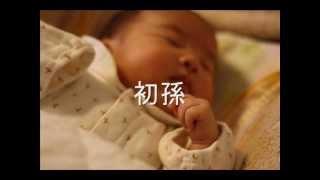 松前ひろ子 - 初孫