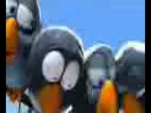 Птички головары (обилее мата)