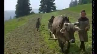 Deutsche Doku HD: bäuerliches Leben im Mittelalter
