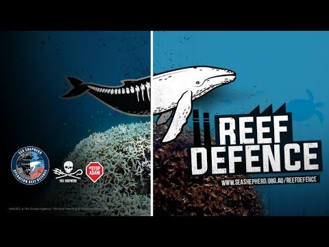 Operation Reef Defence to Stop Adani!