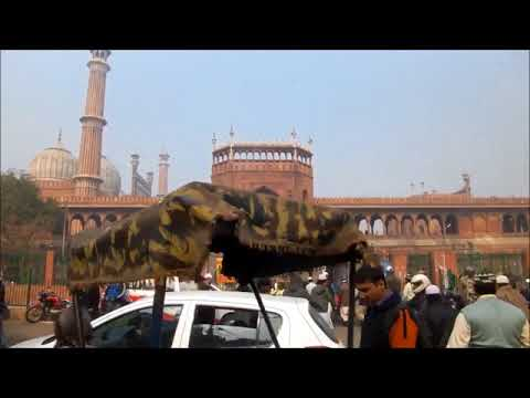 What to expect in Delhi | The Capital of India