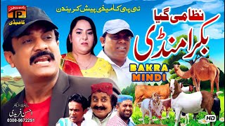 Nizami Gaya Bakra Mandi | Akram Nizami | TP Comedy