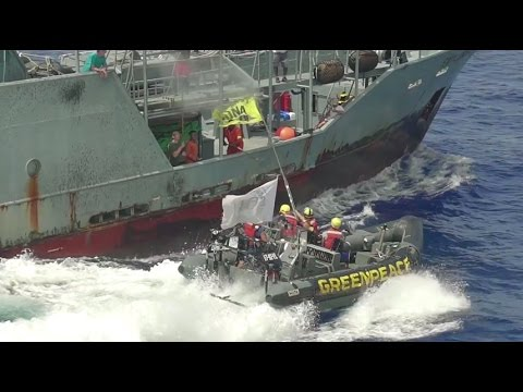 Greenpeace take action against controversial tuna vessel