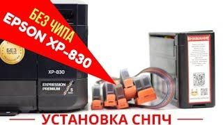 Как установить СНПЧ на бесчиповый Epson XP-830? Пошаговая инструкция