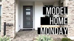 #ModelHomeMonday QUEEN CREEK, AZ