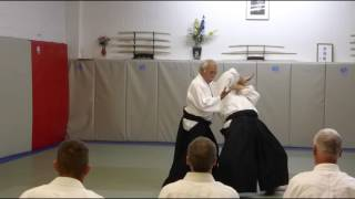 Takeguchi Shihan at Allegheny Aikikai, July 16th 2016 - 02