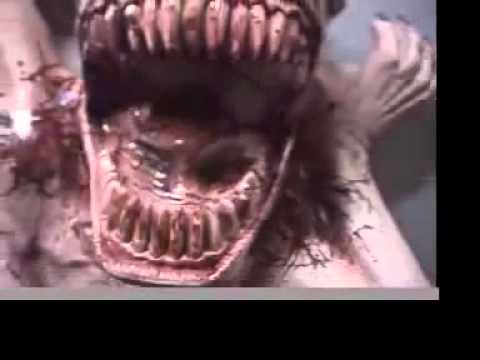 Scary halloween props diy scary halloween - Chomp Animated Halloween Prop Latex Moving Scary Jaw Youtube