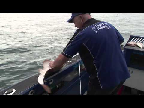 That's Fishing: Season 5 Episode 4 'The Big Gummy'