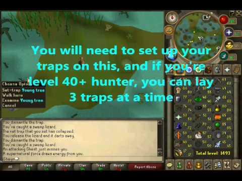 RuneScape: 530k$/hr! Swamp Lizard (Green Salamander) Guide By IShayn